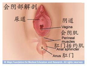 如何应该如何预防阴部瘙痒呢