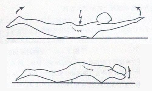 """腰背肌功能锻炼方法""""飞燕式""""详解(转载)"""