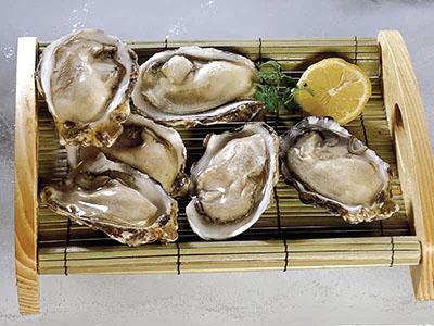 牡蛎图片是什么样子呢