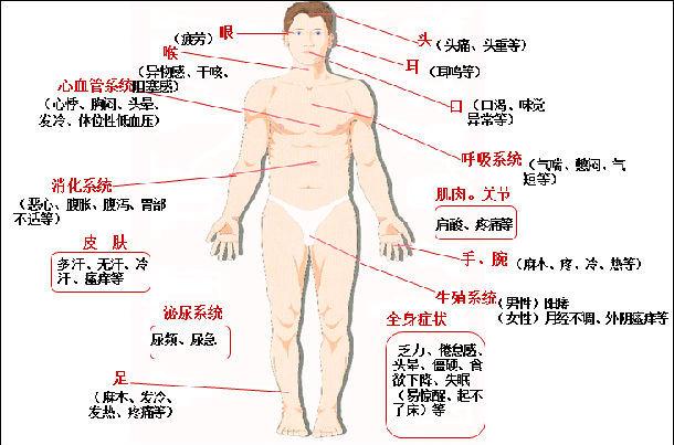 图1. 自主神经功能紊乱表现出的躯体不适-周身不适又查不出原因,要