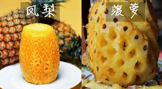 凤梨菠萝傻傻分不清楚