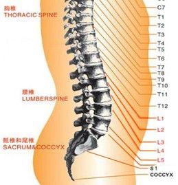 腰椎滑脱怎么注意
