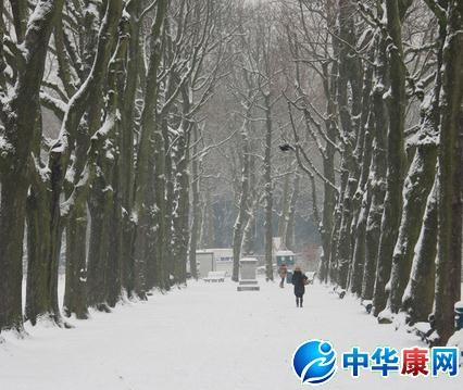 诗词是中国的文化的瑰宝.那么赞美冬天的诗句有哪些呢?