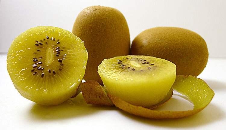 ��;�������C����_黄心猕猴桃是一种富含维生素c的水果,含有丰富的抗氧化剂,可以防治