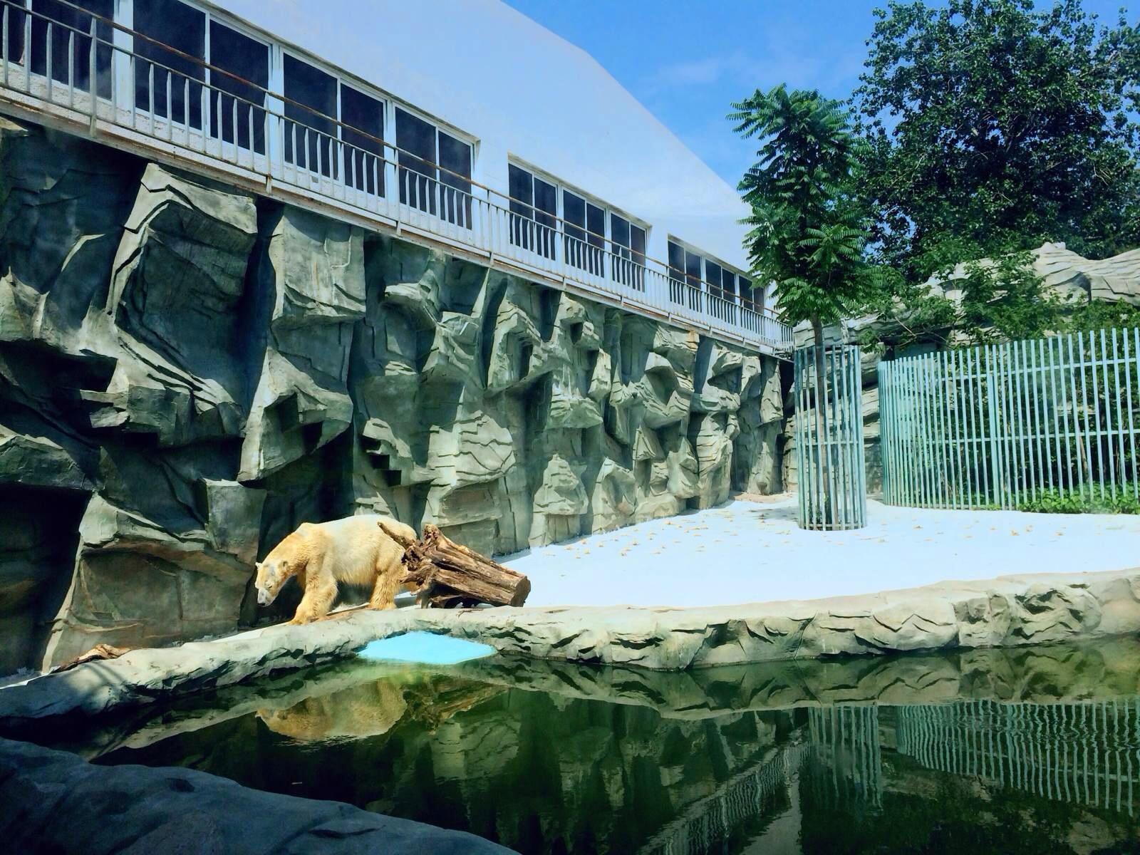 莺歌燕舞的北京动物园