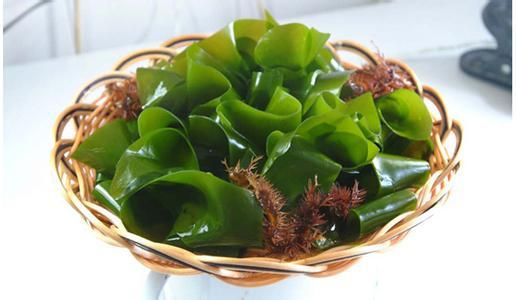 螺旋藻和海藻的区别