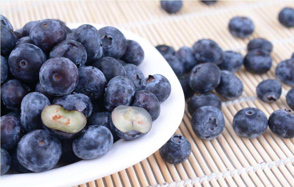 蓝莓对土壤PH值的要求