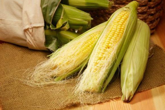玉米须图片