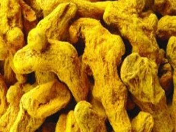 中药黄姜的功效与作用