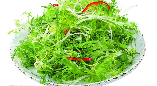 苦菊是什么菜以及吃法
