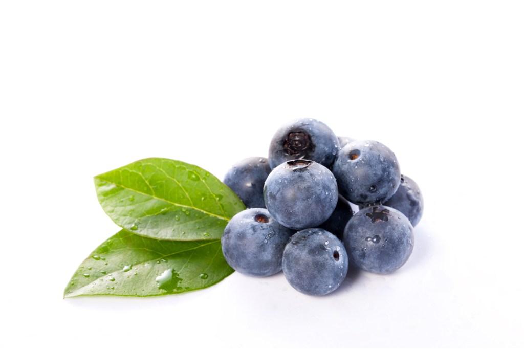 蓝莓多少钱一斤能买到呢