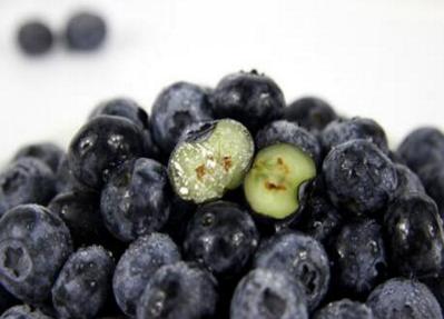 鲜蓝莓价格多少钱一斤