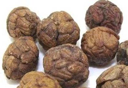 草豆蔻的作用功效是什么呢